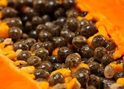 consume papaya seeds