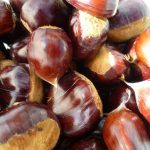Chestnut milk: Benefits and properties