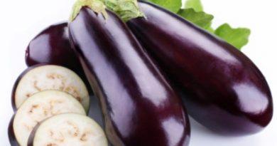 water eggplant benefits