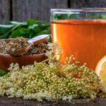 Elderberry tea: Unique benefits and how to do it