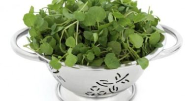watercress benefits